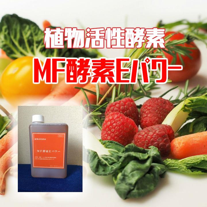 MF酵素Eパワー画像